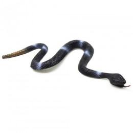 Гремучая змея, вид 1 Y14