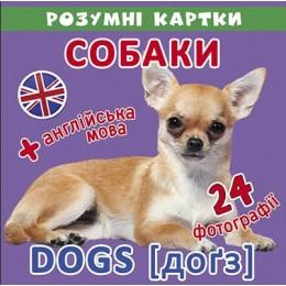 [F00020495] Розумні картки. Собаки. 12 карток